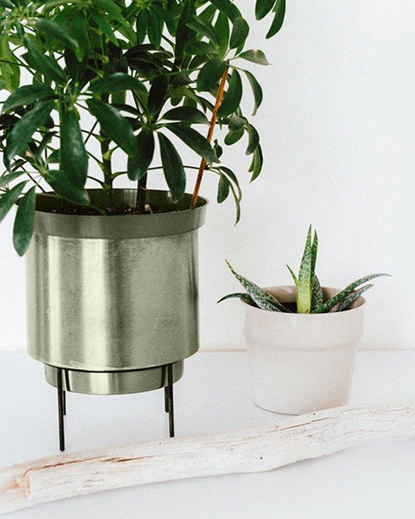 thegreen portfolio1