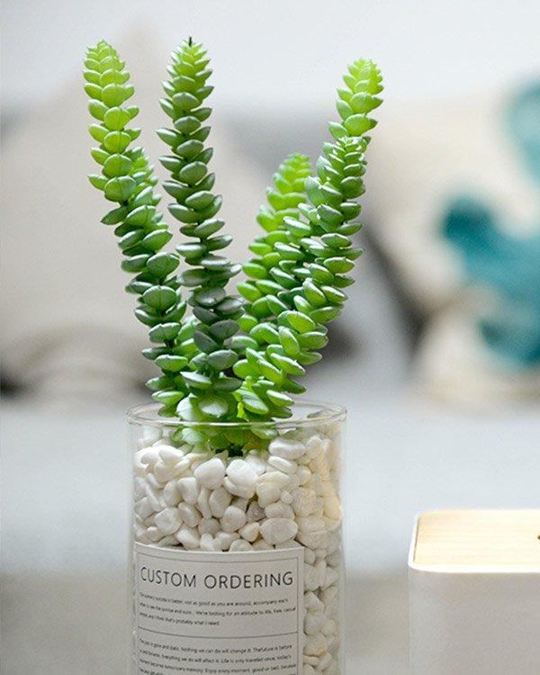 thegreen portfolio5